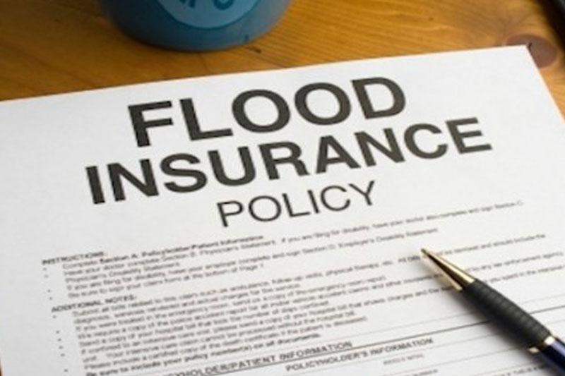 Insurance Reports